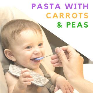 Baby Food Recipe