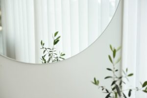 picture of a mirror on a white wall reflecting a plant